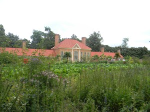 The upper garden with a view of the greenhouse